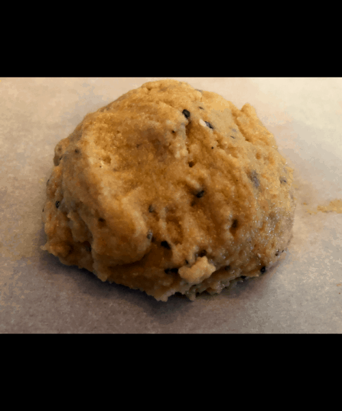 Psyllium Rolls dough