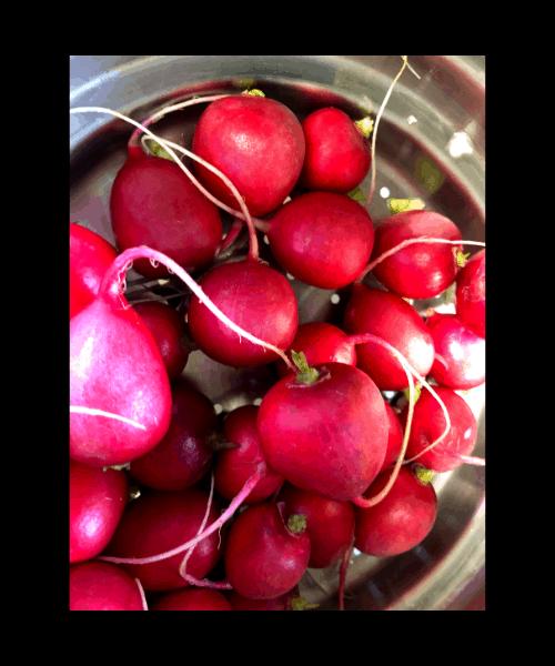 whole fresh radishes