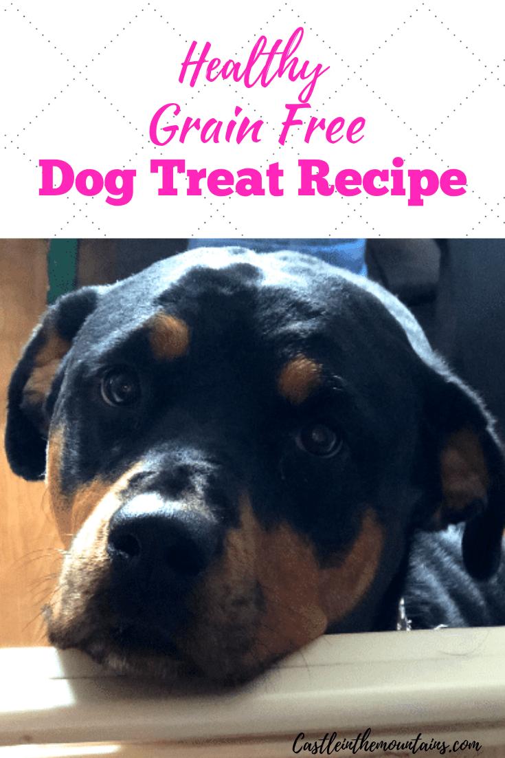 Grain Free Healthy Dog Treats