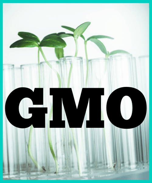 Don't eat GMO's for a less toxic diet