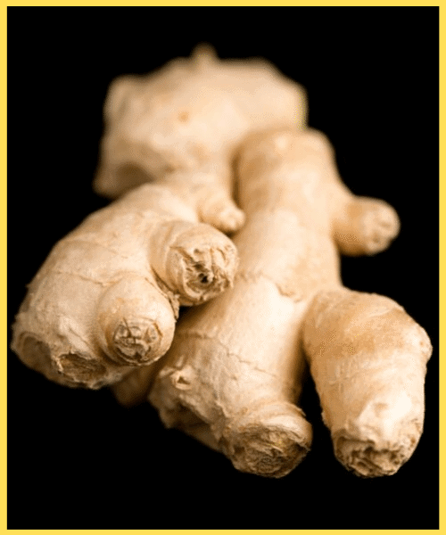 Thai & Asian spices Ginger
