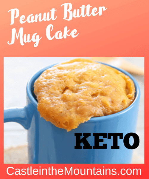 Keto Peanut Butter Mug Cake 3 Ingredients