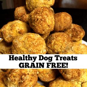 Grain Free healthy Dog Treats recipe