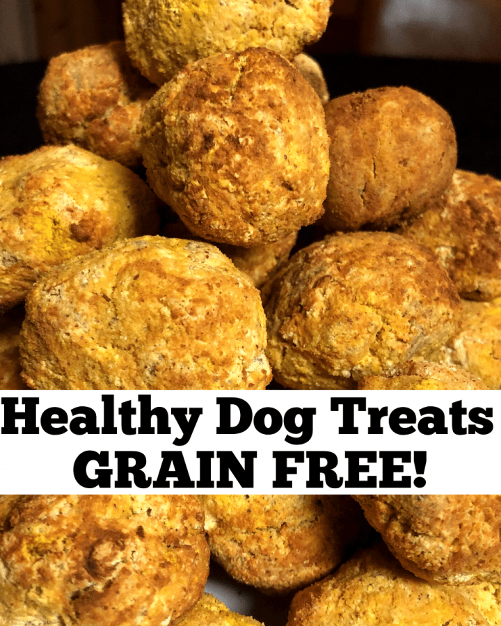 Grain Free healthy Dog Treats recipe