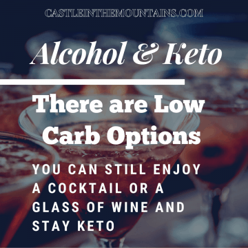A guide to Keto Friendly Alcoholic Adult Beverages FI