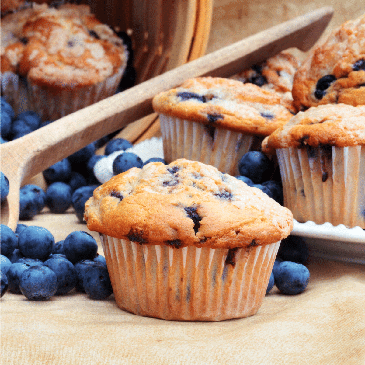 Keto Lemon Blueberry muffins recipe gluten free low carb