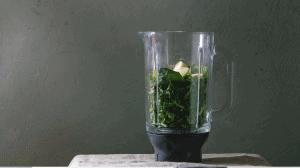 Kale Pesto Recipe (1)