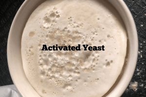 Keto Yeast Bread- Activated yeast