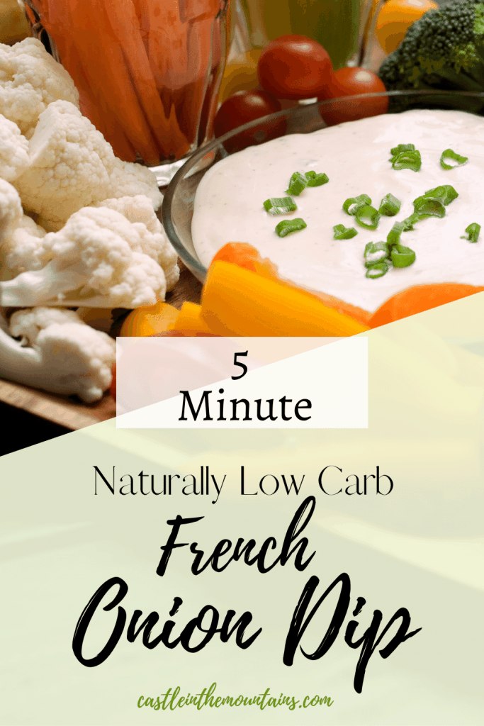 Low carb french onion dip pins (1)