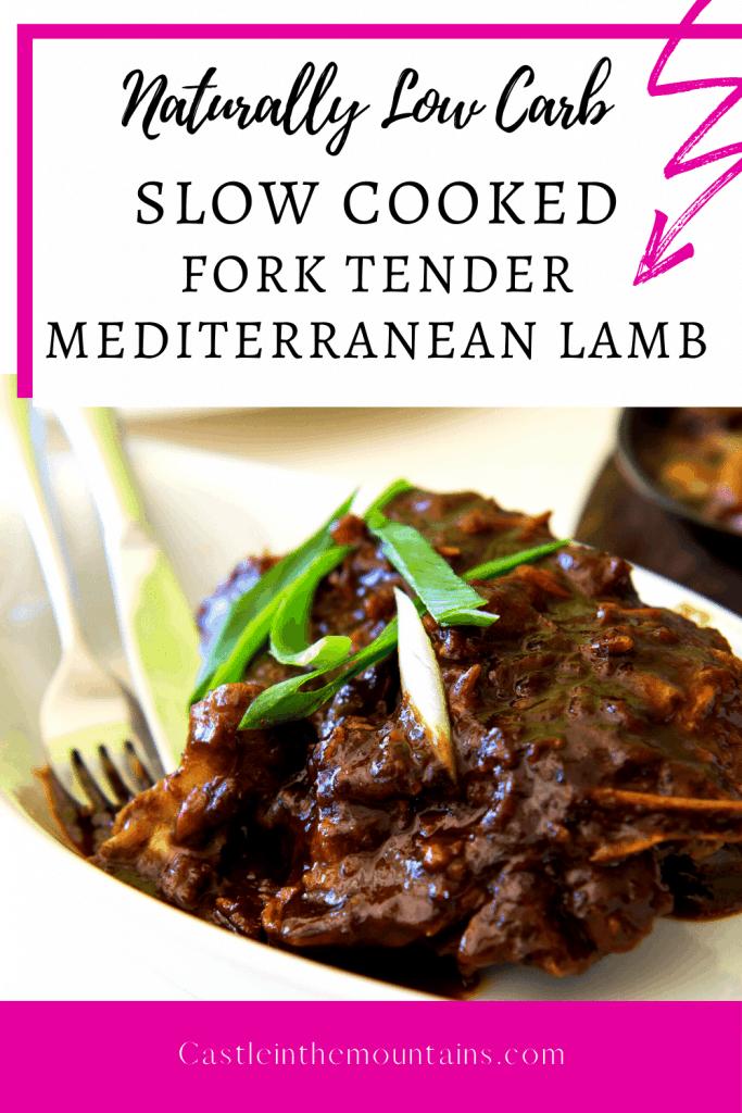 Slow Cooker Mediterranean Lamb Pins (2)