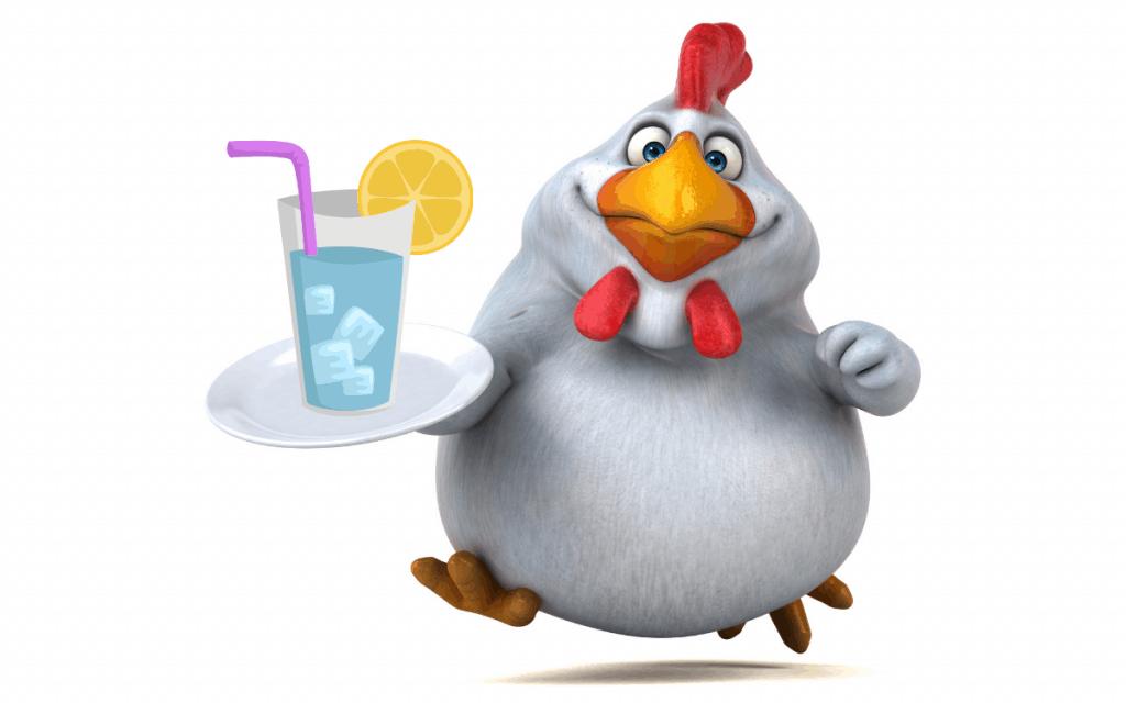 Chicken drinking water to lose weight