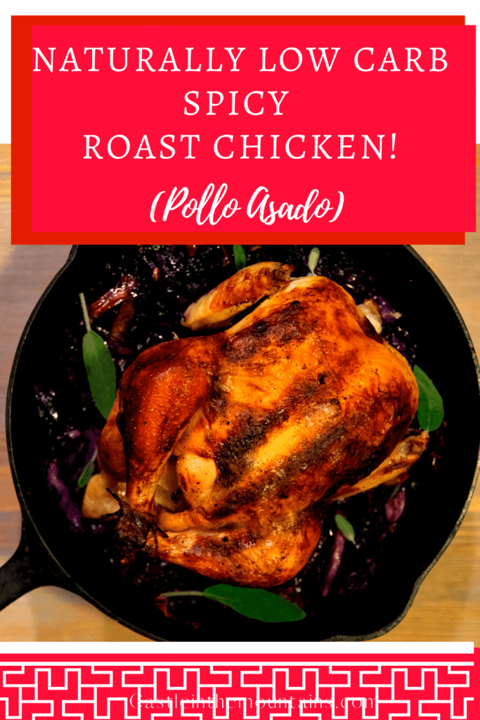 Low Carb Mexican Roasted Chicken Pins (1)