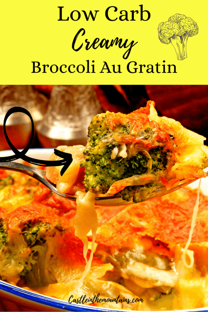 Low Carb Broccoli Gratin Pins (5)