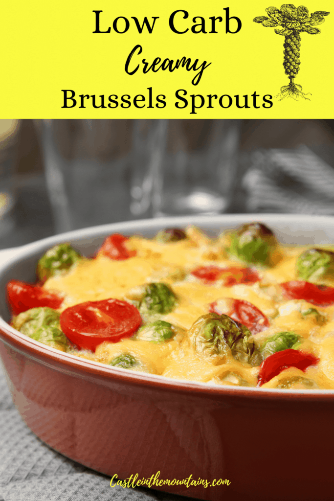 Low Carb Creamed Brussels Sprouts Pins (5)