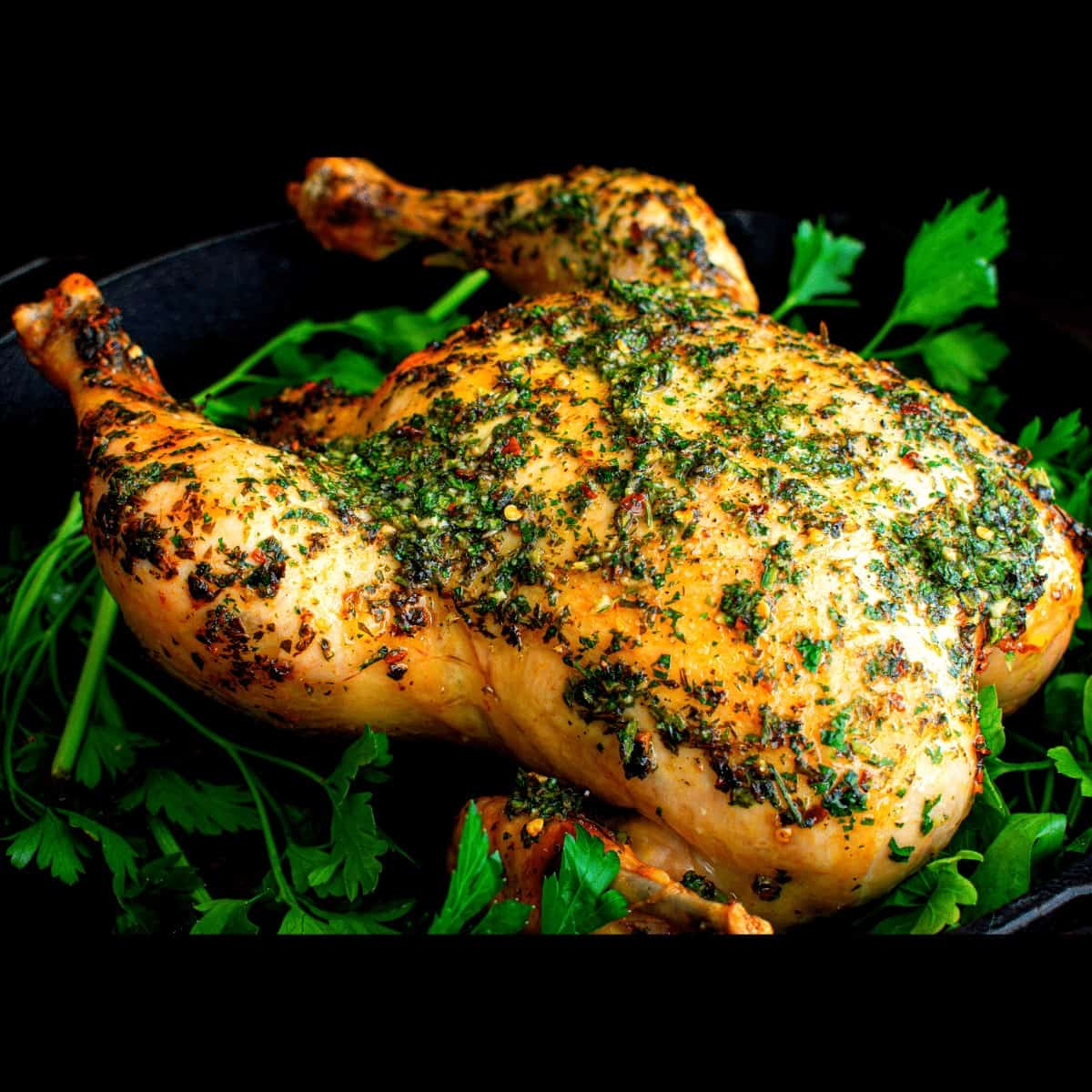 Roasted Chimichurri chicken FI