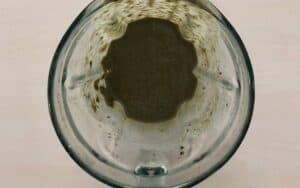 Chimichurri sauce in a blender