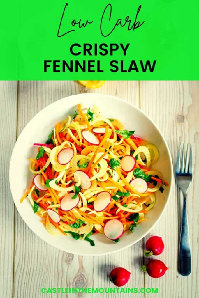 Low Carb Cabbage and Fennel Slaw Pins (2)