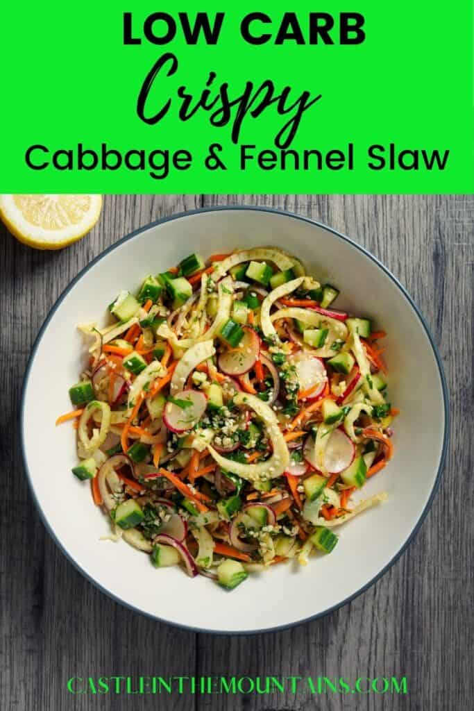 Low Carb Cabbage and Fennel Slaw Pins (3)