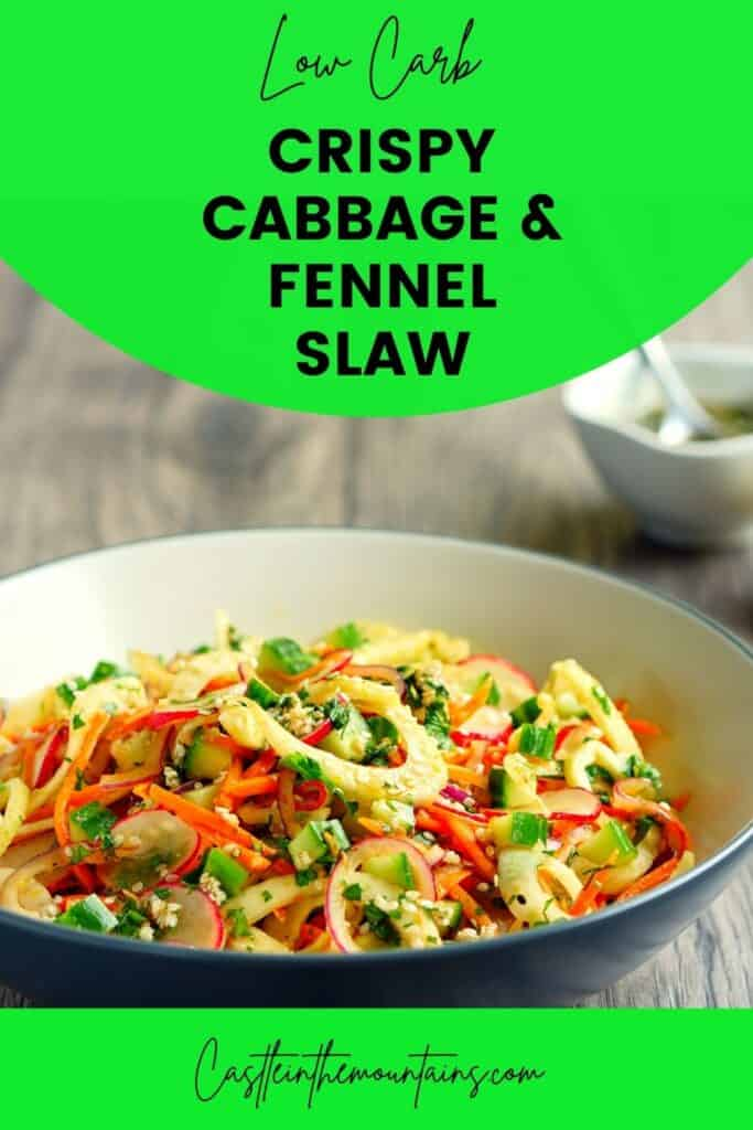 Low Carb Cabbage and Fennel Slaw Pins (4)