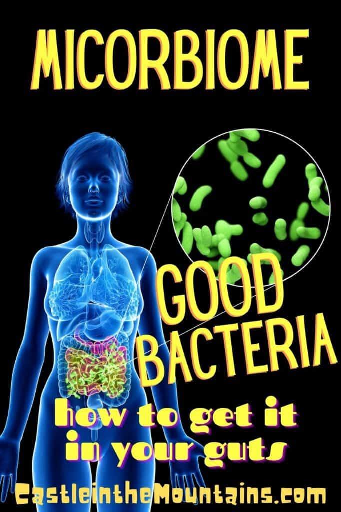 Good Gut Bacteria microbiome pin