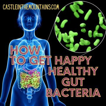 How to get Healthy Gut Bacteria - Microbiome