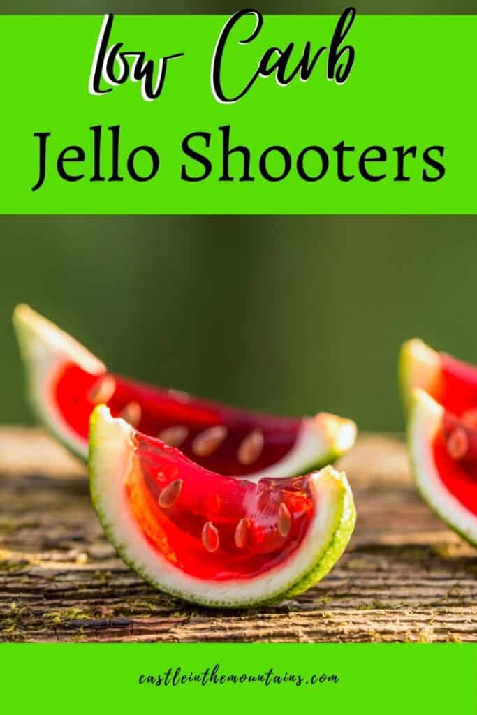 Low Carb Jello Shots Pins (3)